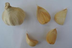 Allium sativum ssp. sativum [50 bulbils] Ljubitovica (Ljubitovački šarac)